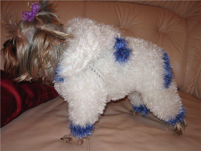Вязание Одежды Для Собак.