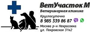 Ветеринарная клиника «ВетУчасток М»