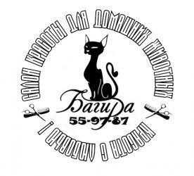 Стрижка собак и кошек в Сыктывкаре