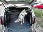 Автогамаки для перевозки собак в автомобиле