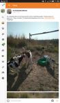 Помогите определить породу щенков
