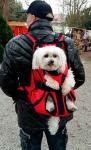 Переноска-рюкзак для собаки