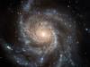 Аватар пользователя Stellar