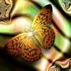 Аватар пользователя fotina13